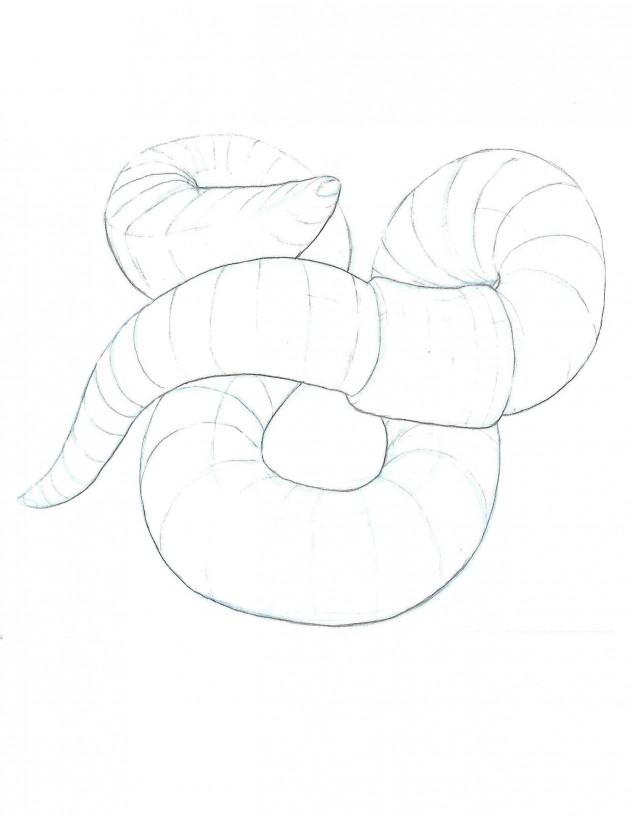 PSwormexterior